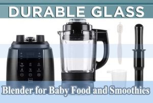 Blender for Baby Food and Smoothies